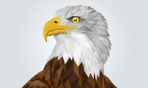Dibujos de Aguilas