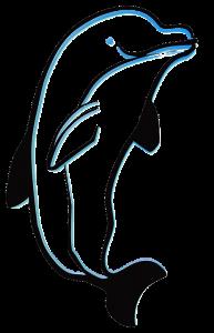 Como dibujar un delfin a lapiz