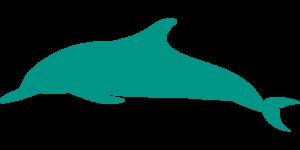 Imagenes Delfines para imprimir