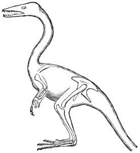 Juegos de pintar Dinosaurios