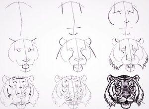 dibujos de animales a lapiz