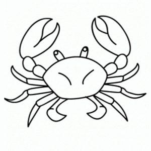 cangrejo para dibujo tecnico