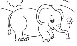 cara de elefante