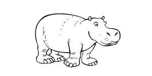 caricatura de hipopotamo