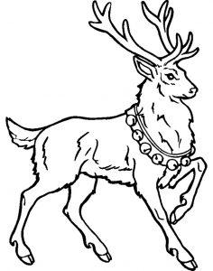 como dibujar un reno navideño
