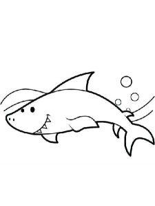 como dibujar un tiburon martillo