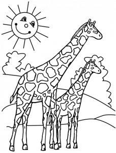 como dibujar una jirafa facil