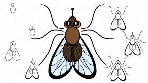 como dibujar una mosca facil