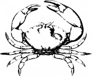 como se dibuja un cangrejo