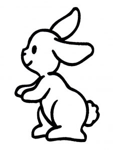 conejo dibujo