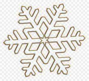 copo de nieve vector
