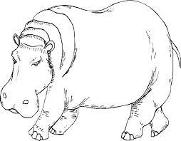 dibujos animados de hipopotamos