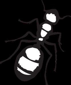 dibujos animados de hormigas