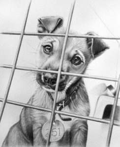 dibujos de animales faciles de dibujar