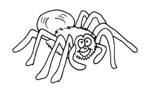 dibujos de arañas a lapiz