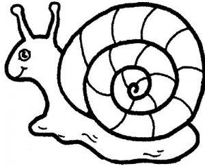 dibujos de caracoles animados