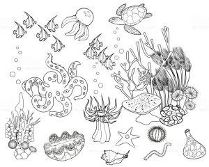 dibujos de esponjas