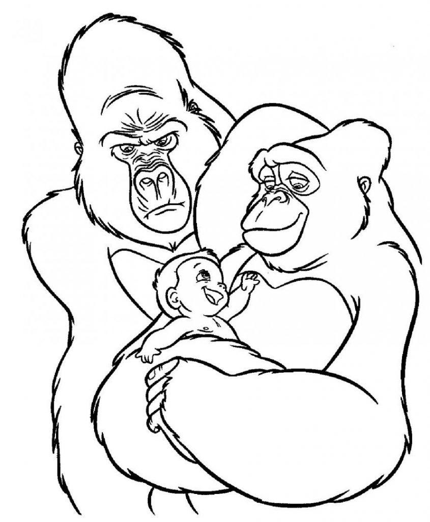 dibujos de gorilas a lapiz