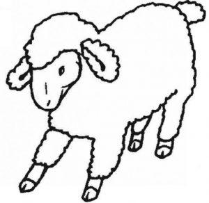 dibujos de ovejas para colorear