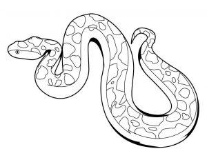 dibujos de serpientes para niños