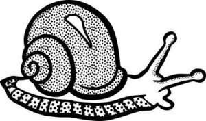 escalera de caracol dibujo