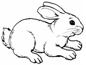 figuras de conejos