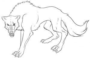 fotos lobos