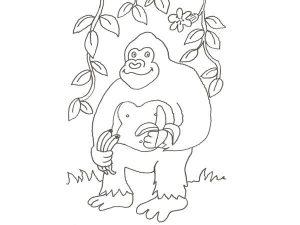 gorilas fotos