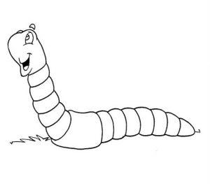 gusano para niños