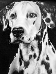 imagenes de animales bonitos para dibujar