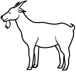 imagenes de cabras animadas
