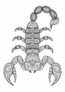 imagenes de escorpiones con frases