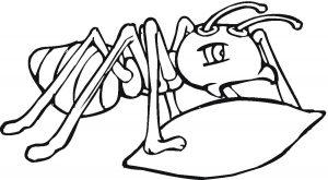 imagenes de hormigas infantiles