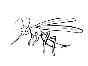 imagenes de insectos para niños