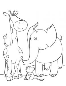 imagenes de jirafas bebes