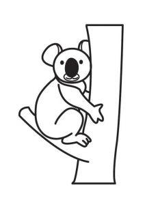 imagenes de koalas para colorear