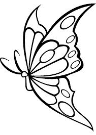 imagenes de mariposas y flores
