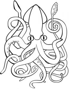 imagenes de pulpos para dibujar
