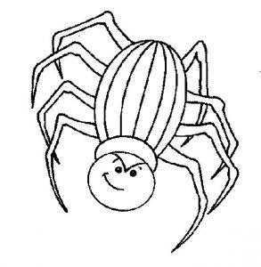 insectos imágenes
