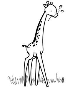 jirafa infantil