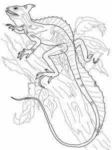 lagarto dibujo animado