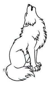 lobos imagenes