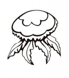 medusa dibujo para colorear