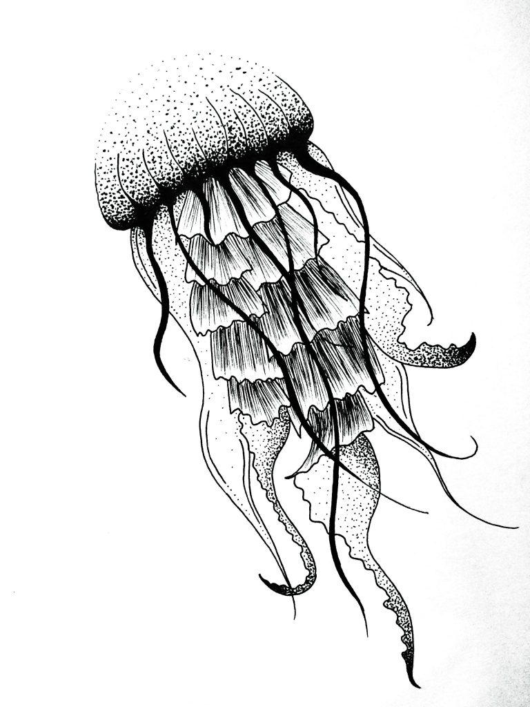 medusa imagen