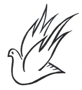 paloma mensajera dibujo