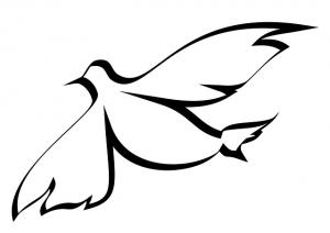 palomas para dibujar