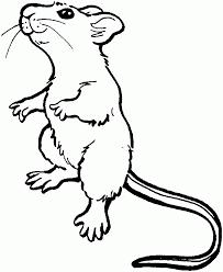 ratoncitos animados