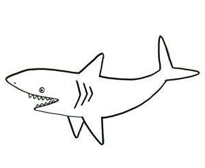 tiburones dibujos