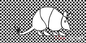 ver imagenes de armadillos