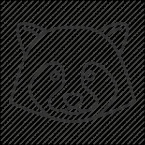 imagenes para colorear de mapaches